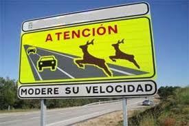 reconocimientos medicos certificado armas barcelona